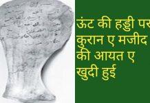 murgi-ka-gosht-halal-hai-ya-haram