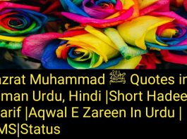 Hazrat Muhammad ﷺ Quotes in Roman Urdu, Hindi |Short Hadees Sharif | Aqwal E Zareen In Urdu | SMS|Status